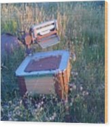 Prairie Washtub Wood Print
