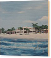 Praminade At Lido Beach Wood Print