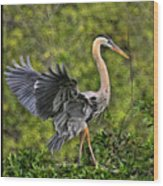 Prancing Heron Wood Print