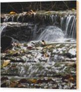 Prather-creek-rapids Wood Print