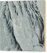 Praying Hands, Also Known As Study Of The Hands Of An Apostle  Wood Print