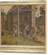 Predella Of La Madonna Della Rondine Wood Print