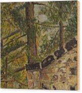 Prelez Preskoc Ale Nepodlez Wood Print