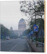 President's House At New Delhi Wood Print