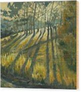 Presidio Wood Print