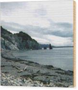 Presqu'ile 2000 Wood Print