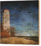 Presquile Lighthouse Wood Print