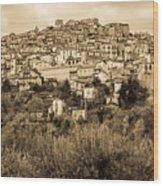Pretoro - Landscape In Sepia Tones  Wood Print