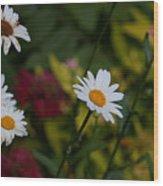 Pretty And Everlasting Wood Print