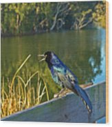 Pretty Bird At A Sunrise Wood Print