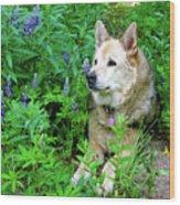 Pretty Dog Wood Print