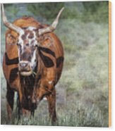 Pretty Female Cow With Horns Wood Print