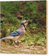Pretty In Blue Wood Print