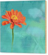 Pretty In Orange Wood Print