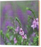Pretty In Pink N Purple Wood Print