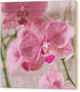Pretty In Pink Wood Print by Pamela Ellis