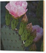 Pretty In Pink Prickly Pear  Wood Print