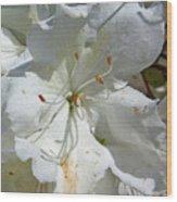 Pretty In White Wood Print