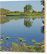 Tranquil Lake In Florida Wood Print