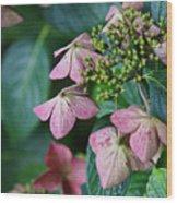 Pretty Old Flowers Wood Print
