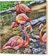 Pretty Pink Flamingos Wood Print