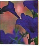 Pretty Petunias Wood Print