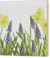 Pretty Spring Flowers All In A Row Wood Print