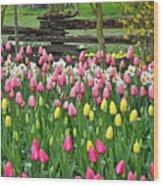 Pretty Tulips Garden Wood Print