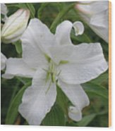 Pretty White Lilies Blooming In A Garden Wood Print