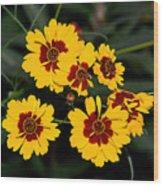 Pretty Yellow Flowers Wood Print