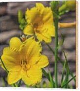Pretty Yellow Wood Print