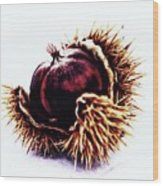 Prickly Little Bitch Wood Print