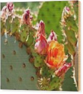 Prickly Pear Blooms Wood Print