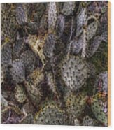 Prickly Pear Cactus At Tonto National Monument Wood Print