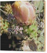 Prickly Pear Flower 4 Wood Print