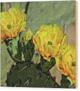 Prickly Pear Flowers H42 Wood Print