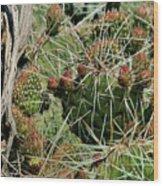 Prickly Pear Revival Wood Print