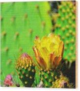 Prickly Pear Wood Print