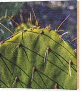 Prickly Pear Study No. 9 Wood Print