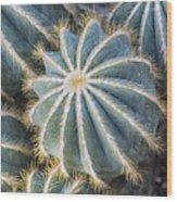 Prickly Wood Print