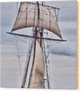 Pride Of Baltimore II  5986 Wood Print