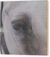 Prides Eye-pride Of The Lough Wood Print