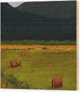 Priest Lake Hay Bales Wood Print