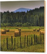 Priest Lake Hay Bales II Wood Print