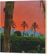 Primary Desert Sunset Wood Print
