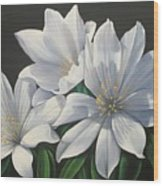 Primavera En Flor Wood Print