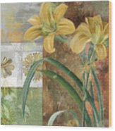 Primavera II Wood Print
