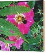 Primrose And Bee Wood Print