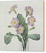 Primrose Wood Print