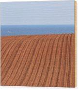 Prince Edward Island Fields 5645 Wood Print